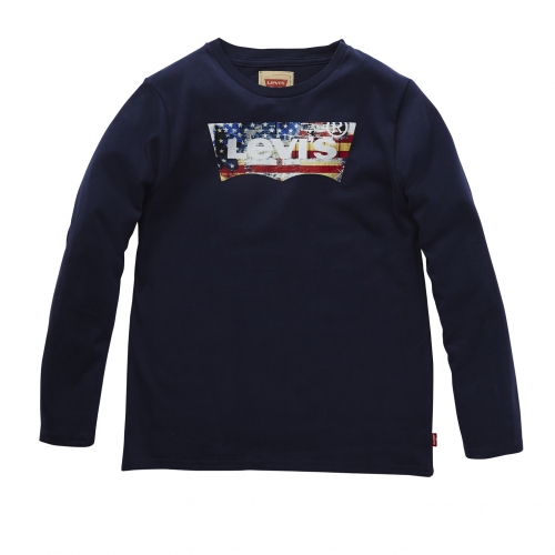 Levi's Boy's Darwin T-Shirt